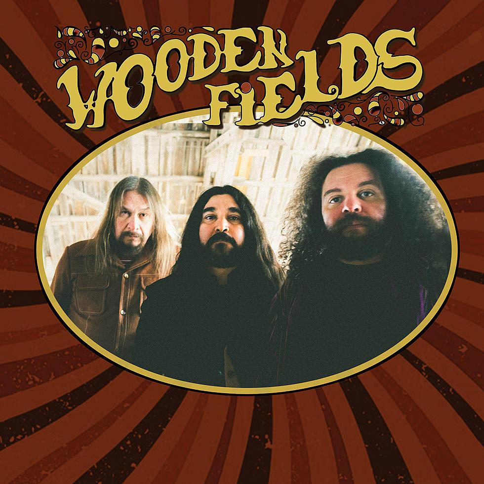 Reseña: WOODEN FIELDS.- 'WoodenFields'